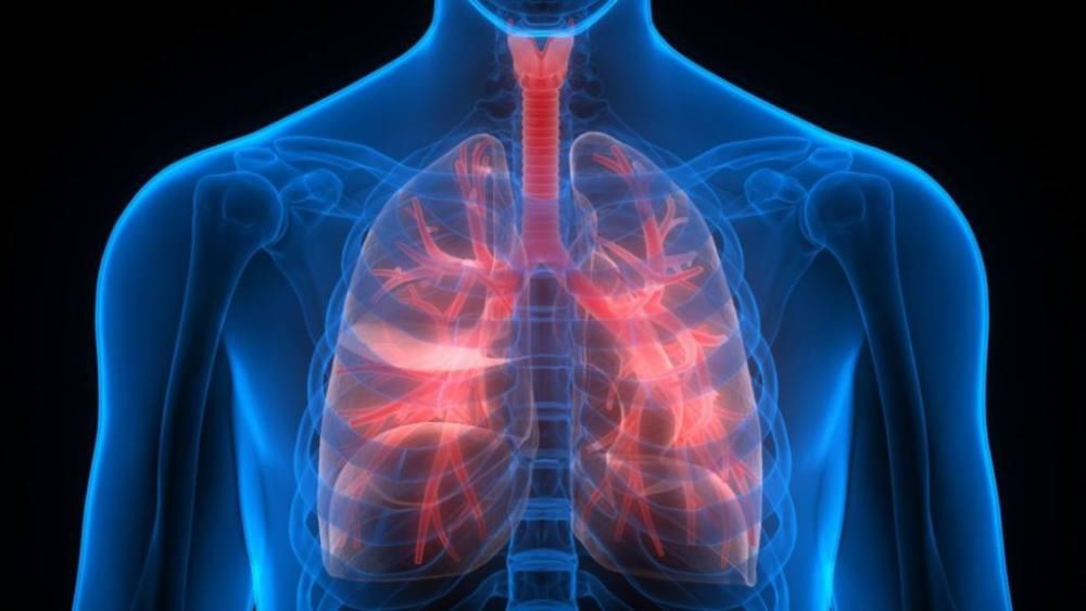 Инкубационный период при туберкулезе 2