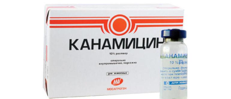 Канамицин