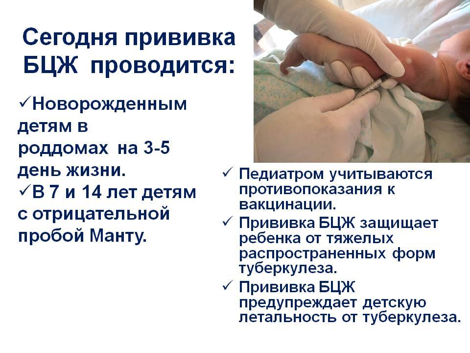 Привика БЦЖ Новорождённым