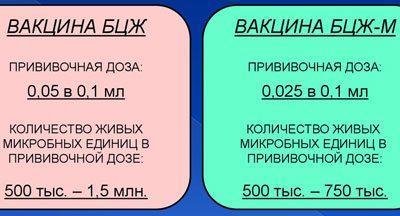 Разница между вакцинами БЦЖ И БЦЖ-М